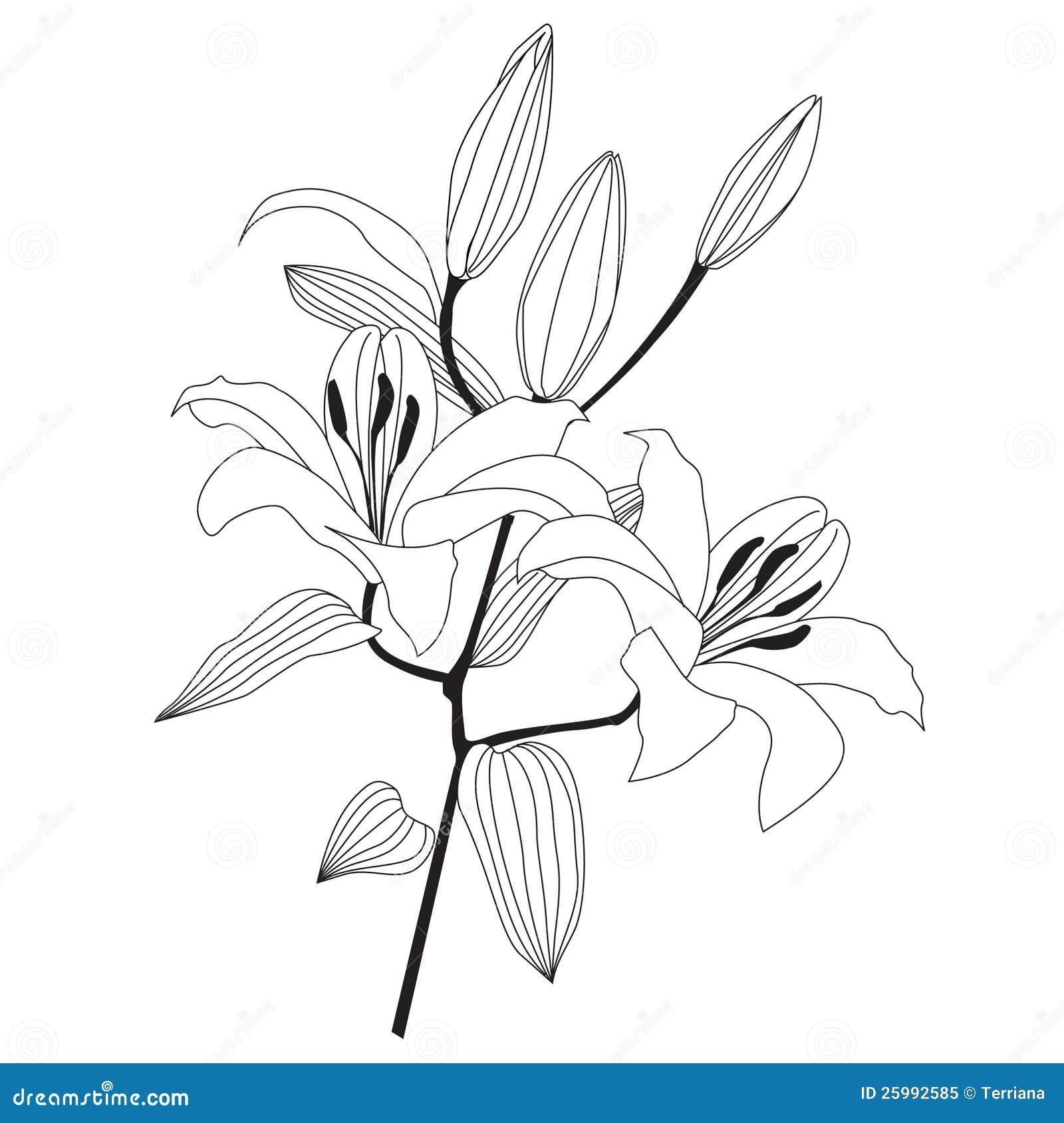 Free halo 3 para lirios coloring pages - Dessin fleur de lys ...