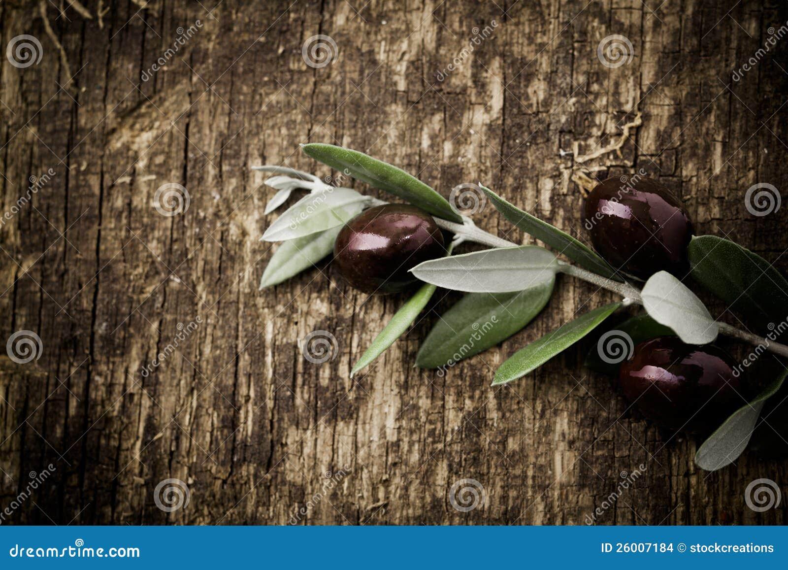 Ramifique con las aceitunas negras frescas