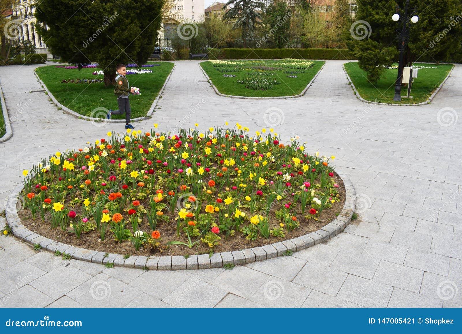 Ramnicu瓦尔恰,罗马尼亚02 04 2019 - 美丽的Zavoi公园在一春天好日子