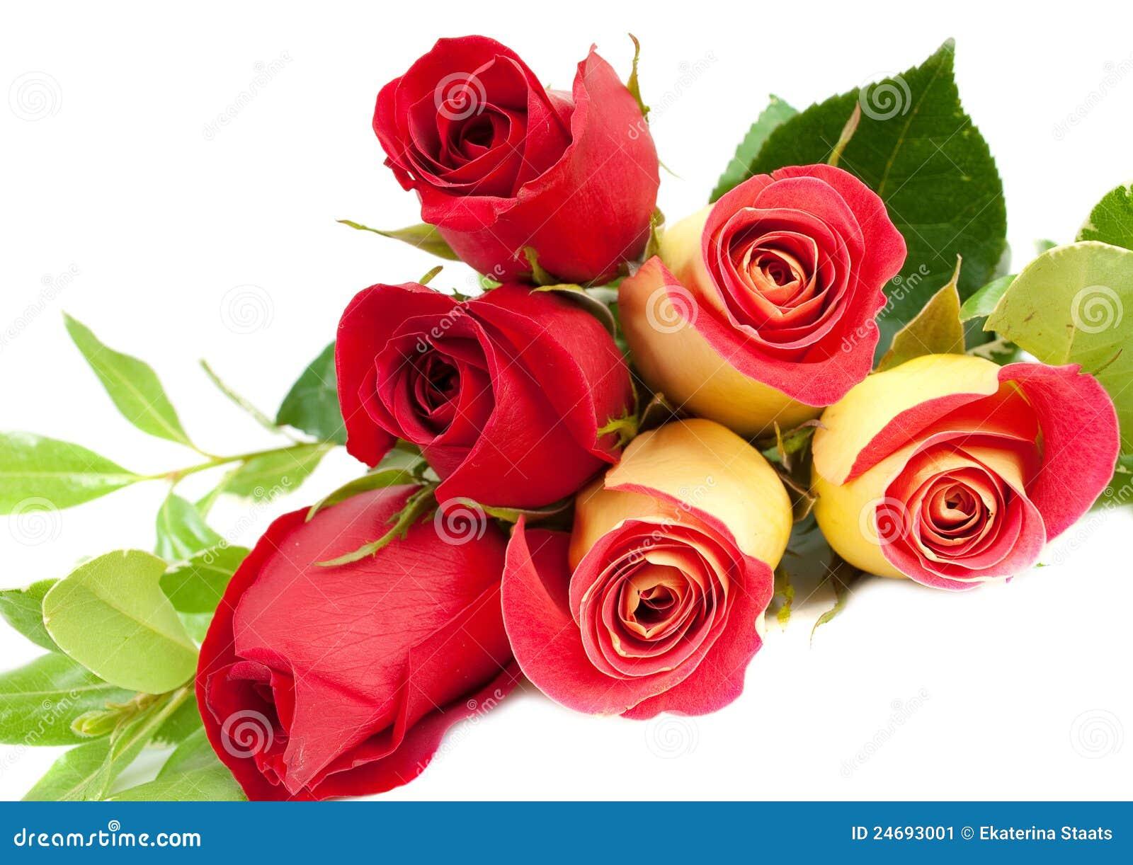 Ramo Amarillo Y Rojo De Las Rosas Imagen de archivo - Imagen: 24693001