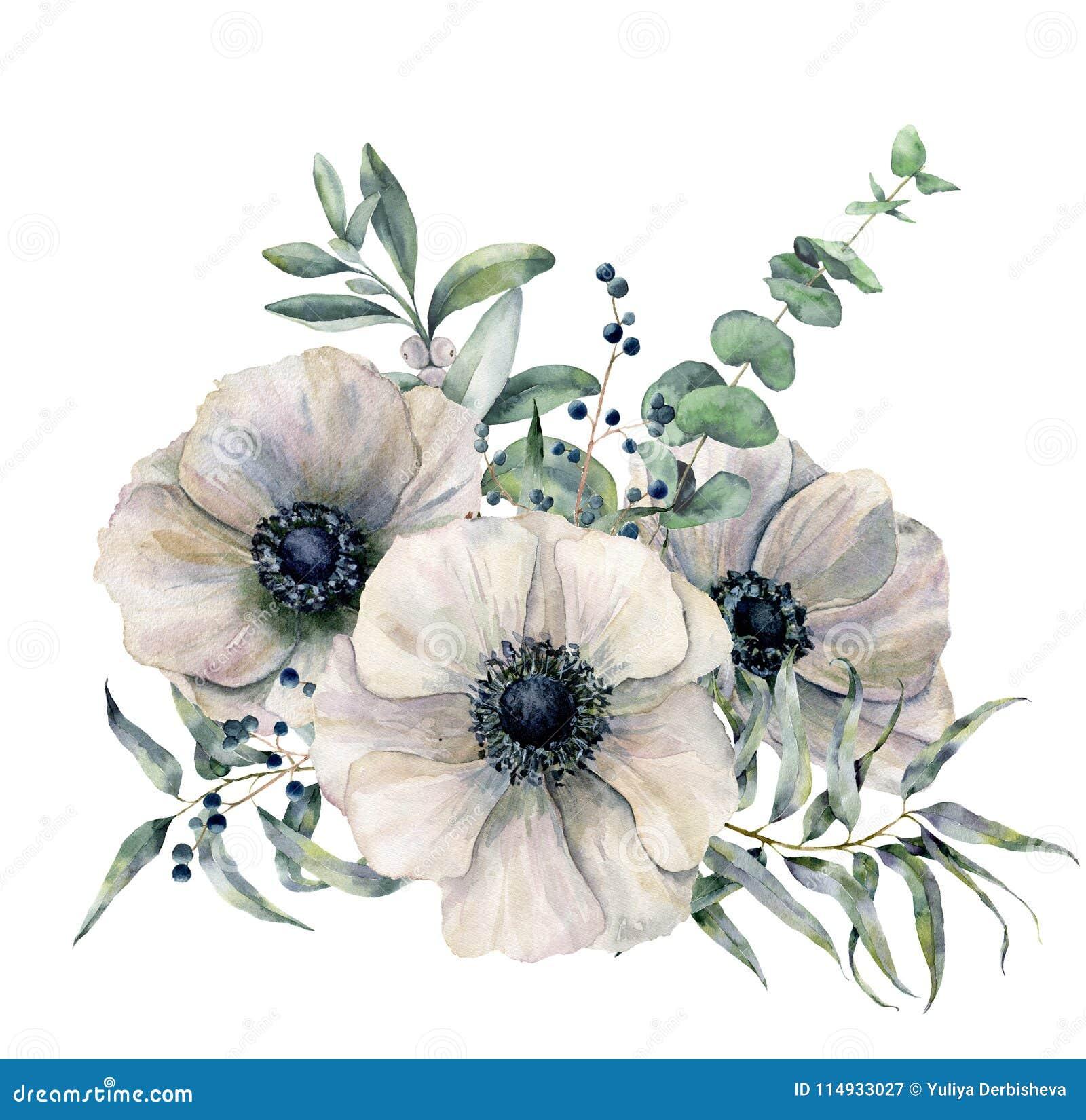 Ramo blanco de la anémona de la acuarela Flor, hojas pintadas a mano del eucalipto y enebro aislados en el fondo blanco