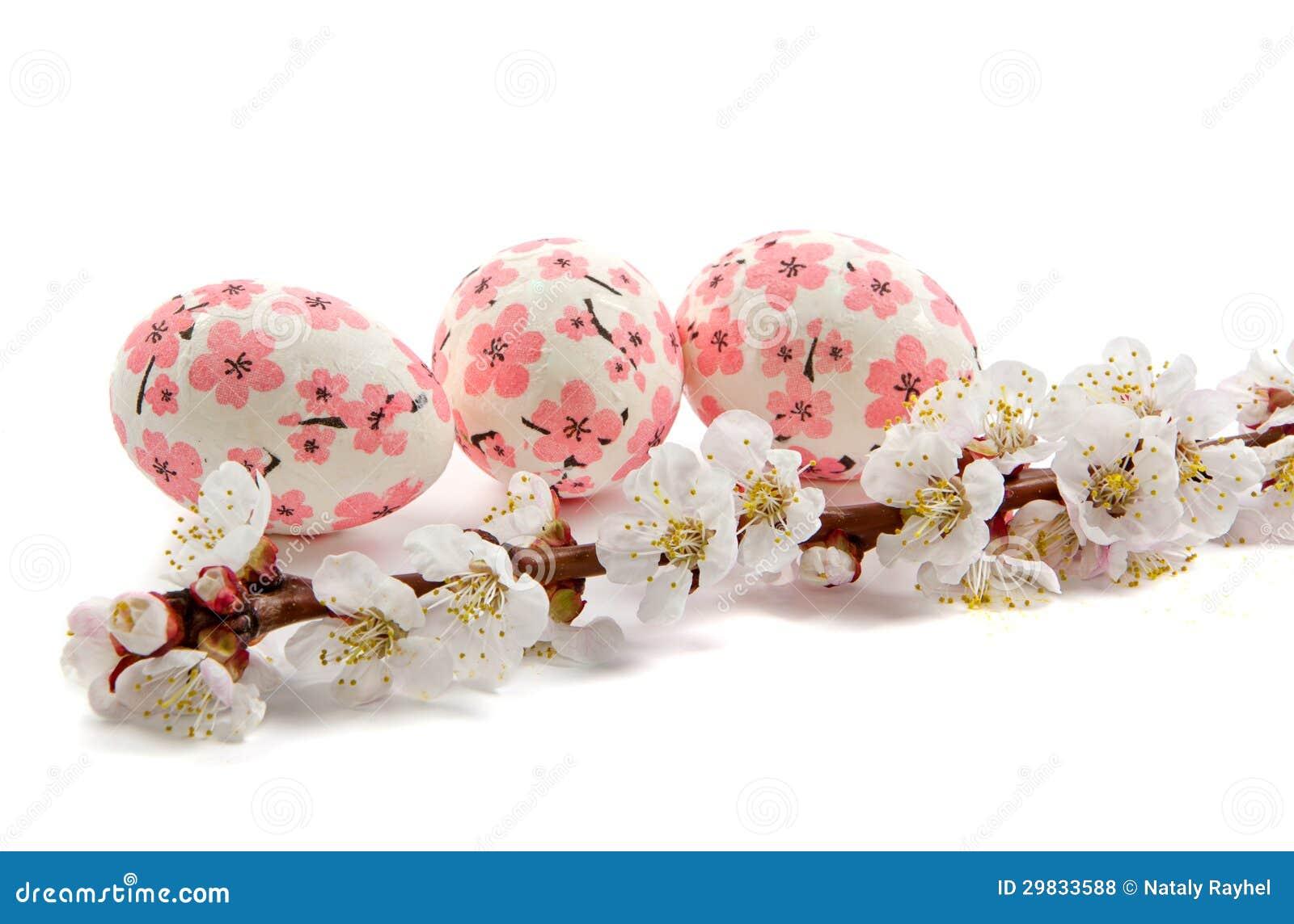 Ramo da flor do abricó e dos ovos da páscoa