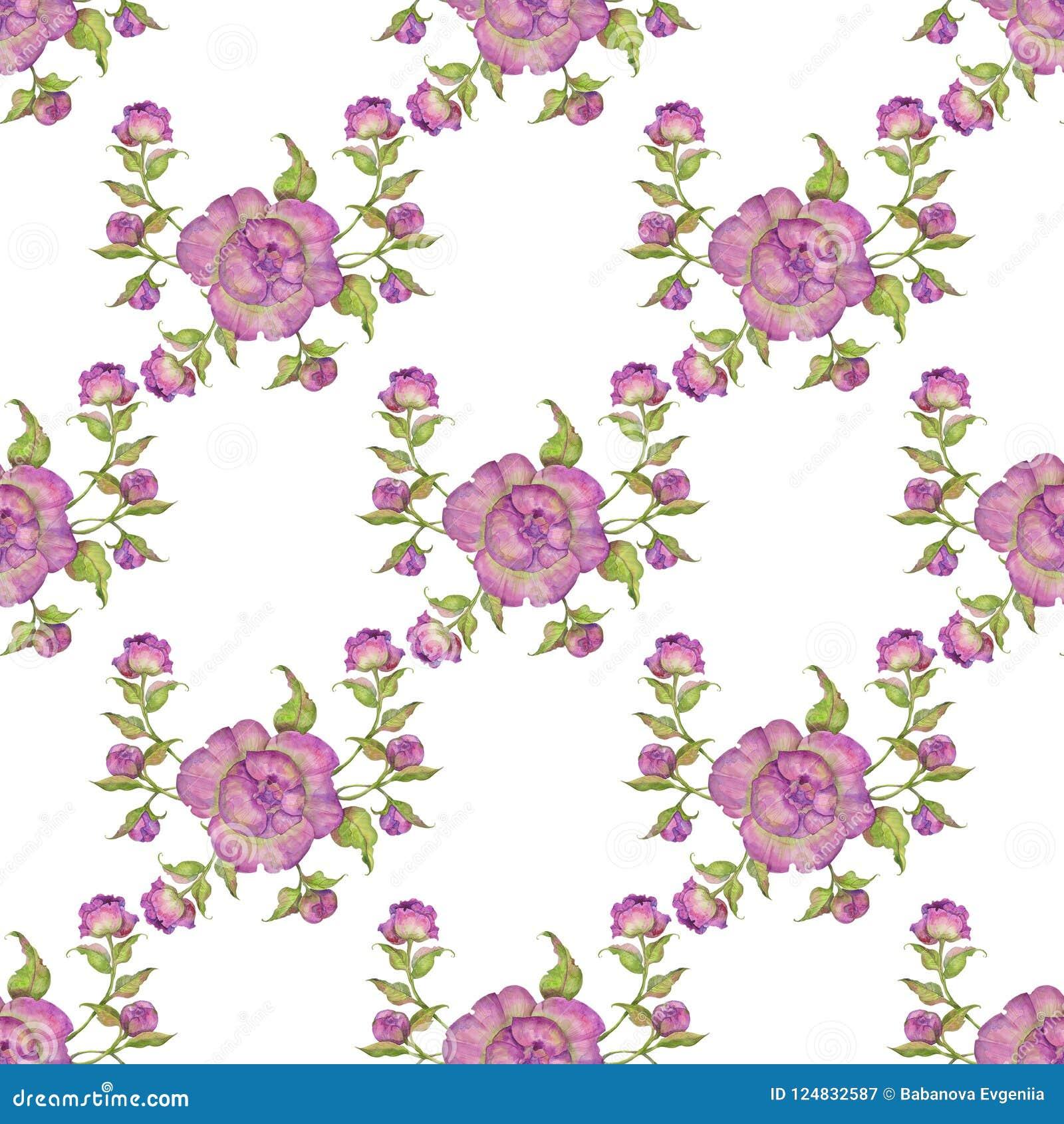 Ramo De Flores De Peonías Púrpuras Modelo Inconsútil