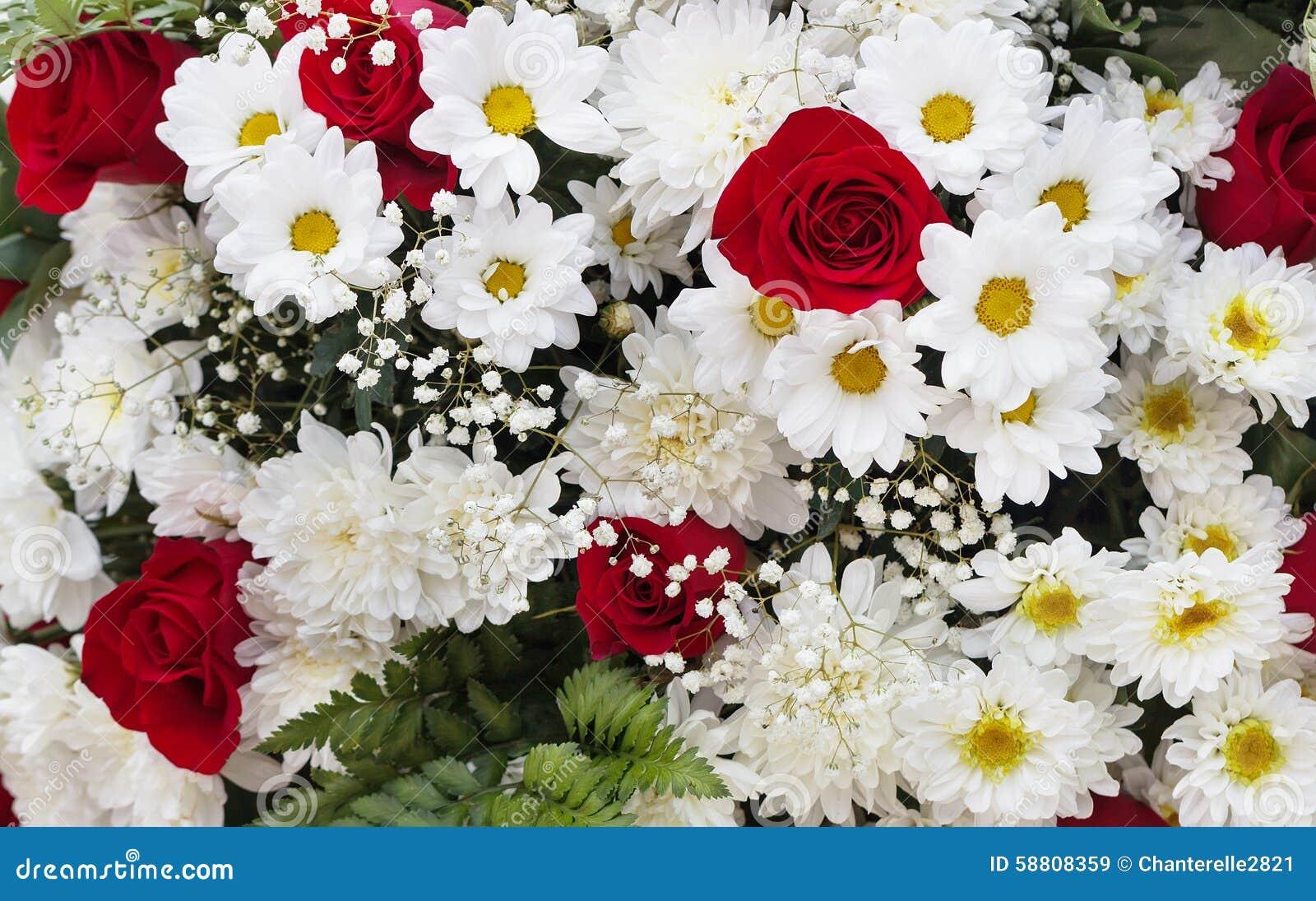 Ramo De Flores Rojas Y Blancas Imagen De Archivo Imagen De Grande