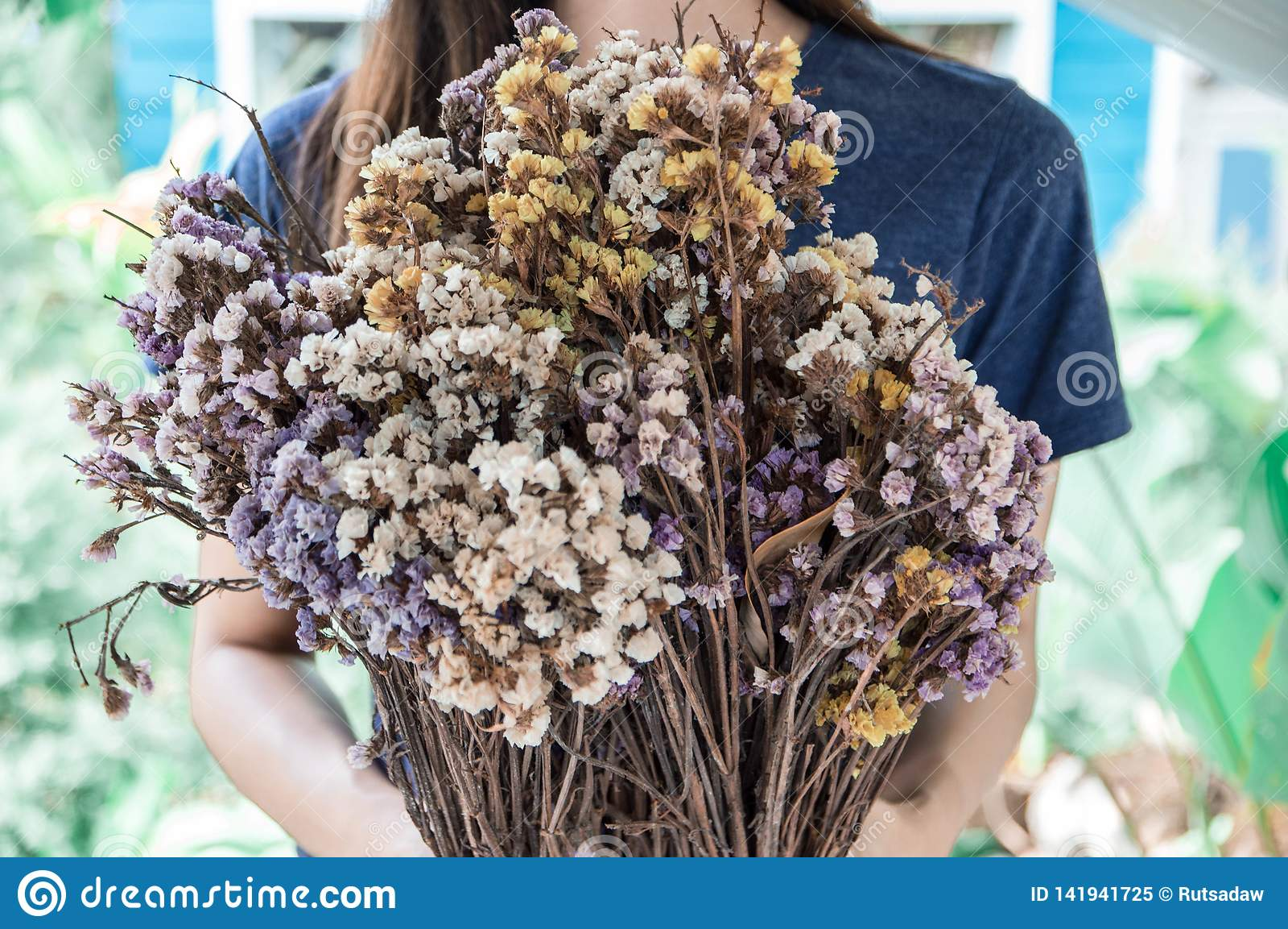 Ramo de flores secadas en manos de las mujeres jovenes
