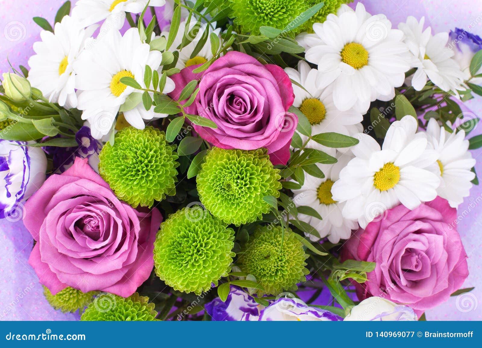 Ramo de las rosas rosadas de las flores, crisantemos blancos con las hojas verdes en cierre aislado fondo blanco para arriba