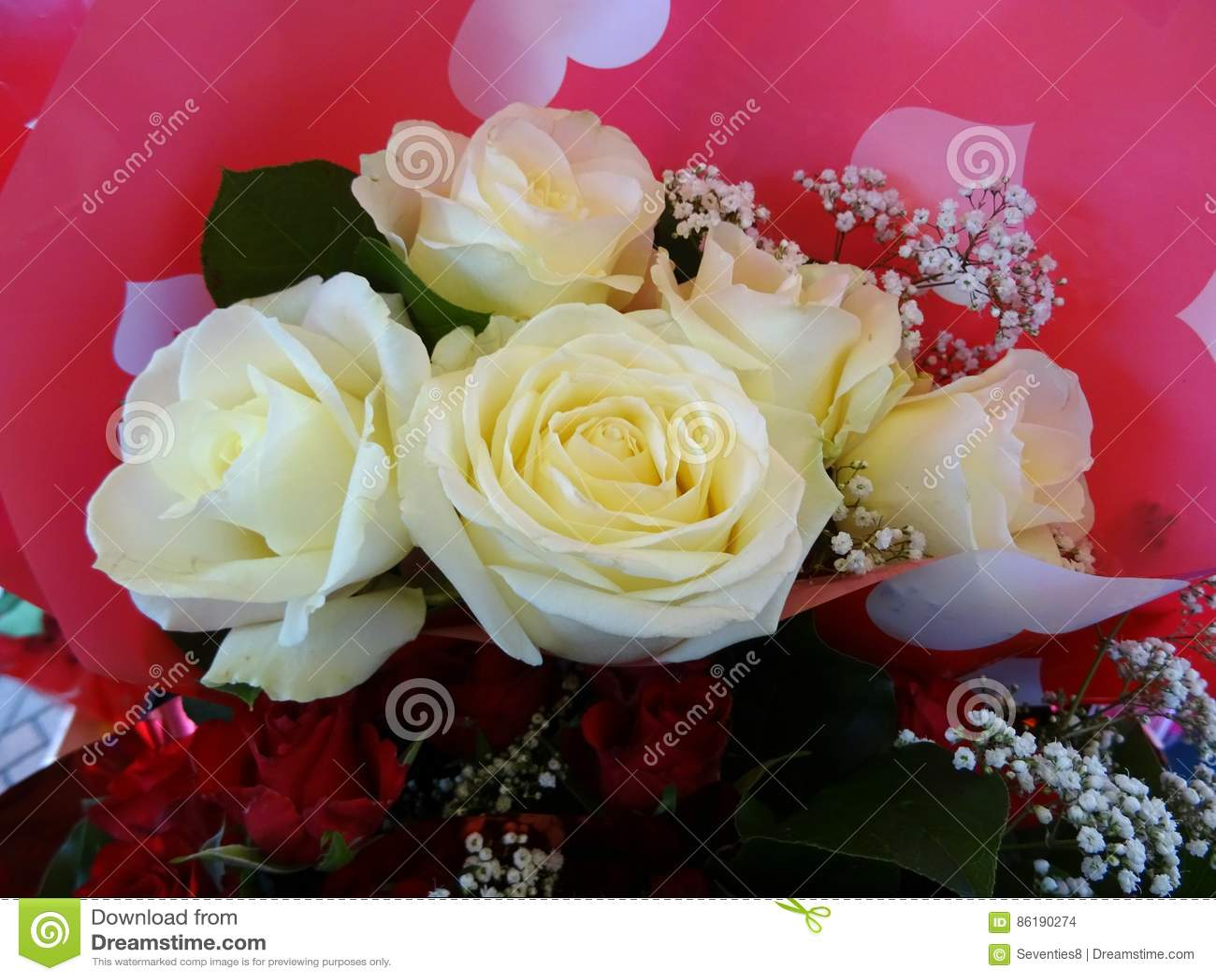 Ramo De Rosas Blancas Foto De Archivo Imagen De Blanco 86190274