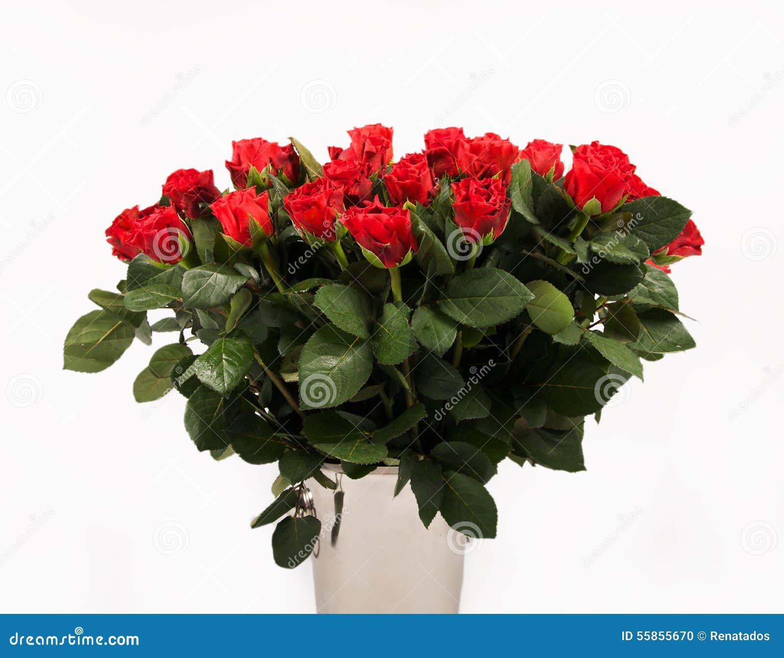 Im genes comunes del ramo grande de rosas rojas los - Ramos de flores grandes ...