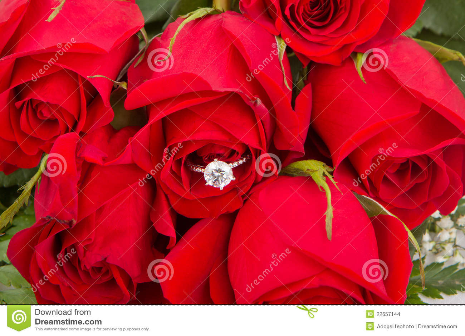Ramo De Rosas Rojas Con El Anillo De Compromiso Foto De