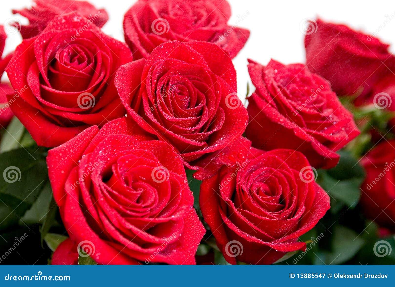 Ramo de Rose