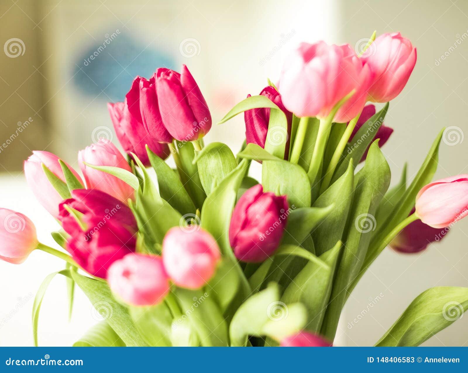 Ramo de tulipanes hermosos, fondo floral