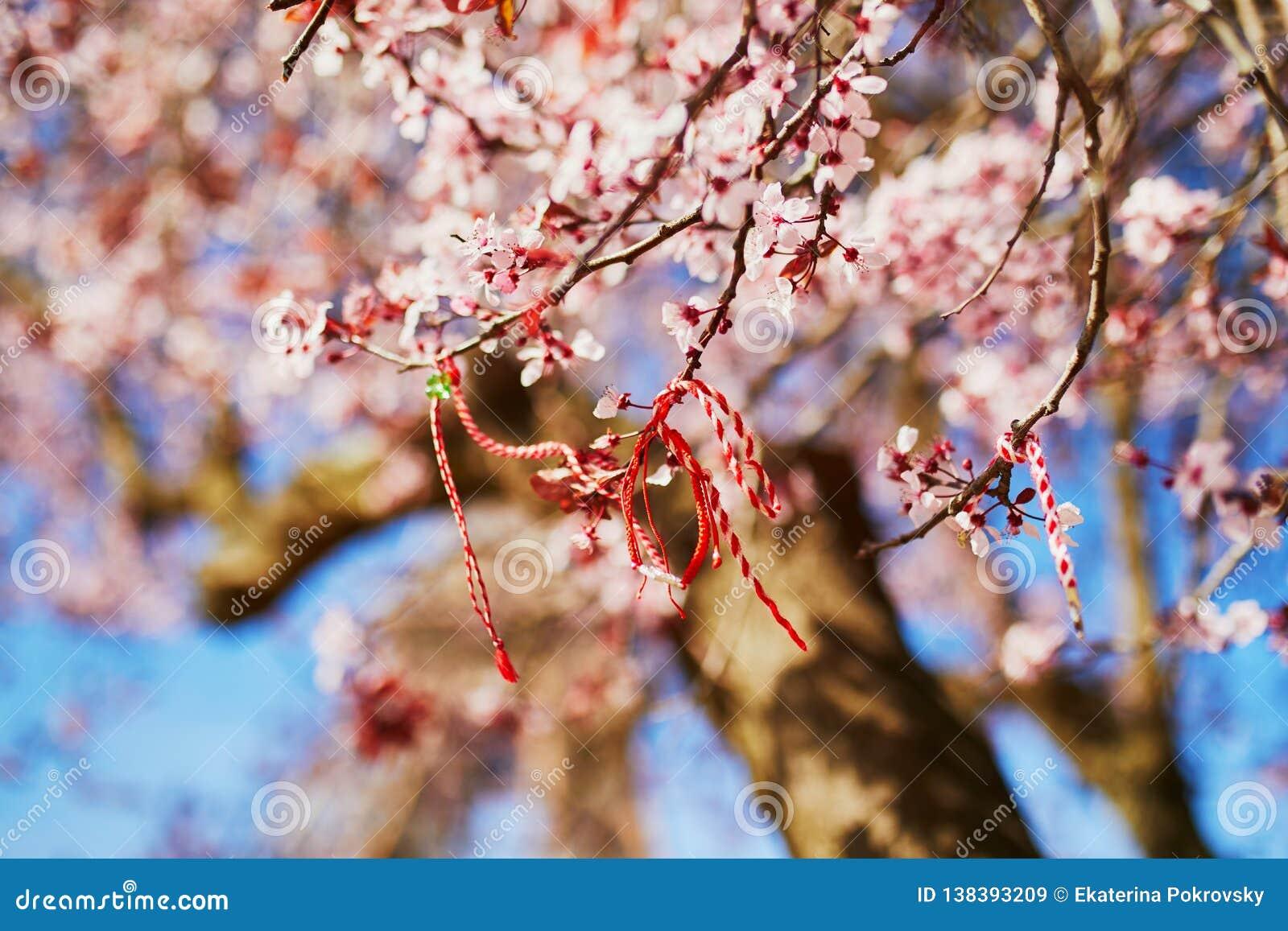 Ramo del ciliegio sbocciante con il martisor rosso e bianco