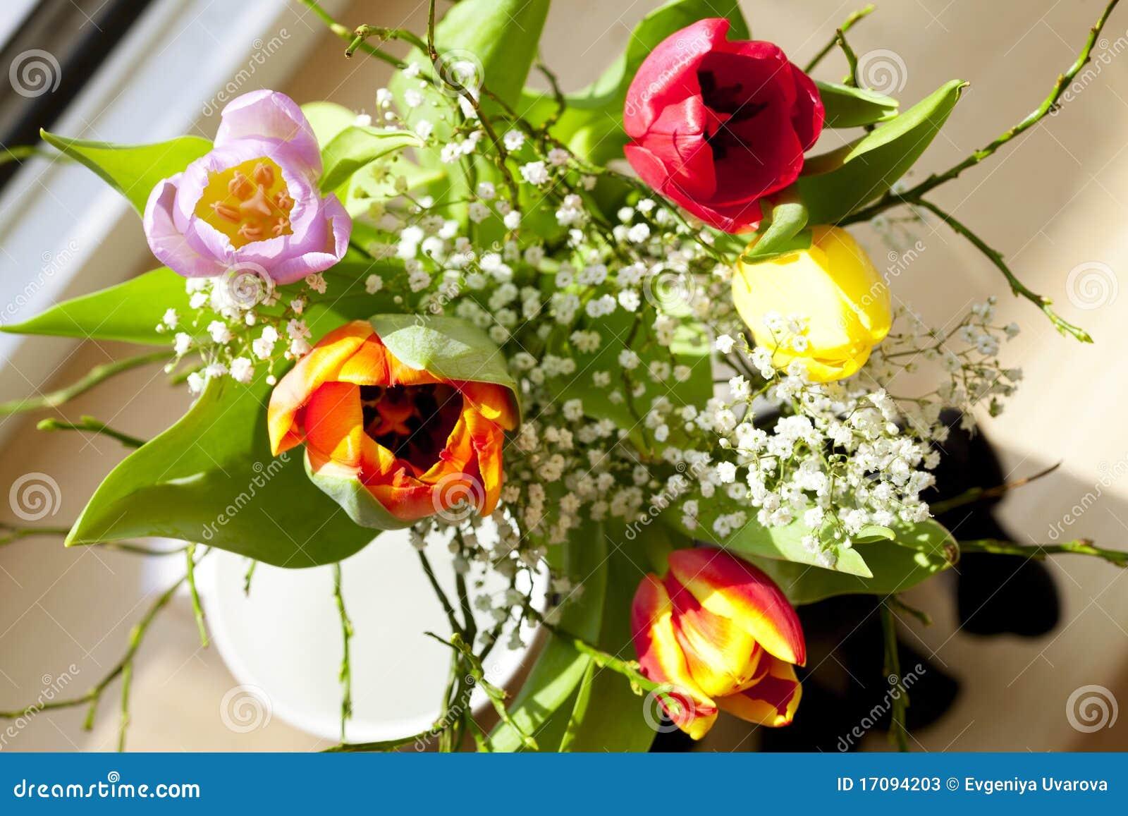 Ramo del resorte con los tulipanes