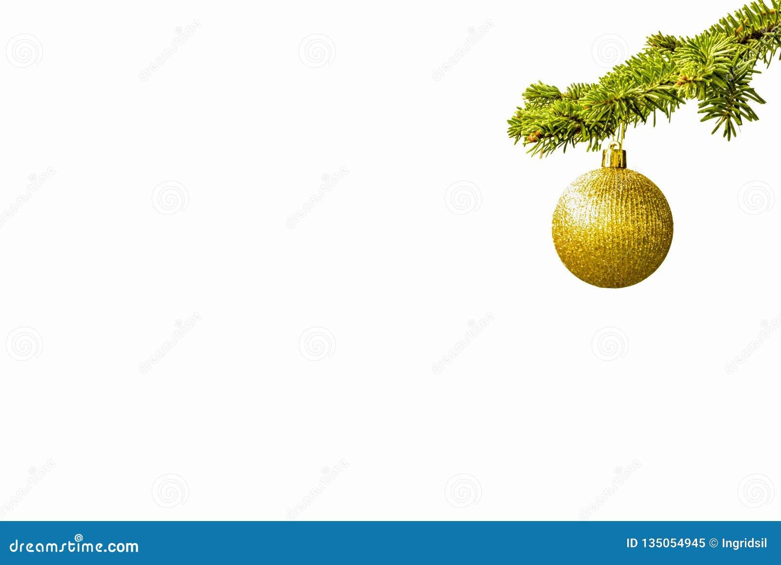 Ramo di albero dell abete con una palla dorata di scintillio su fondo bianco christmastime Cartolina di natale