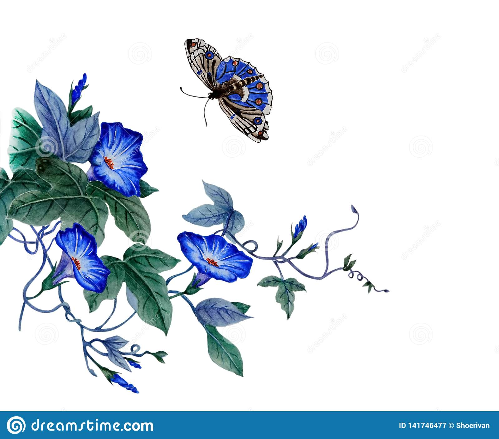 Ramo di ipomea di fioritura
