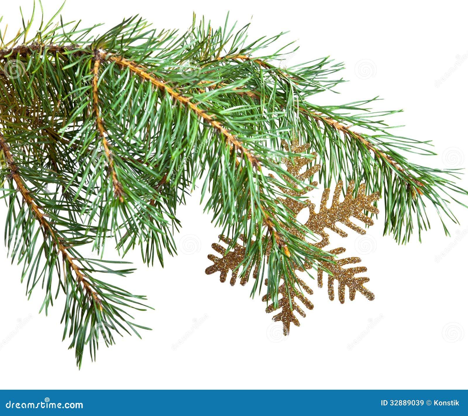 Ramo di un albero di natale e di un fiocco di neve - Contorno di un albero di natale ...