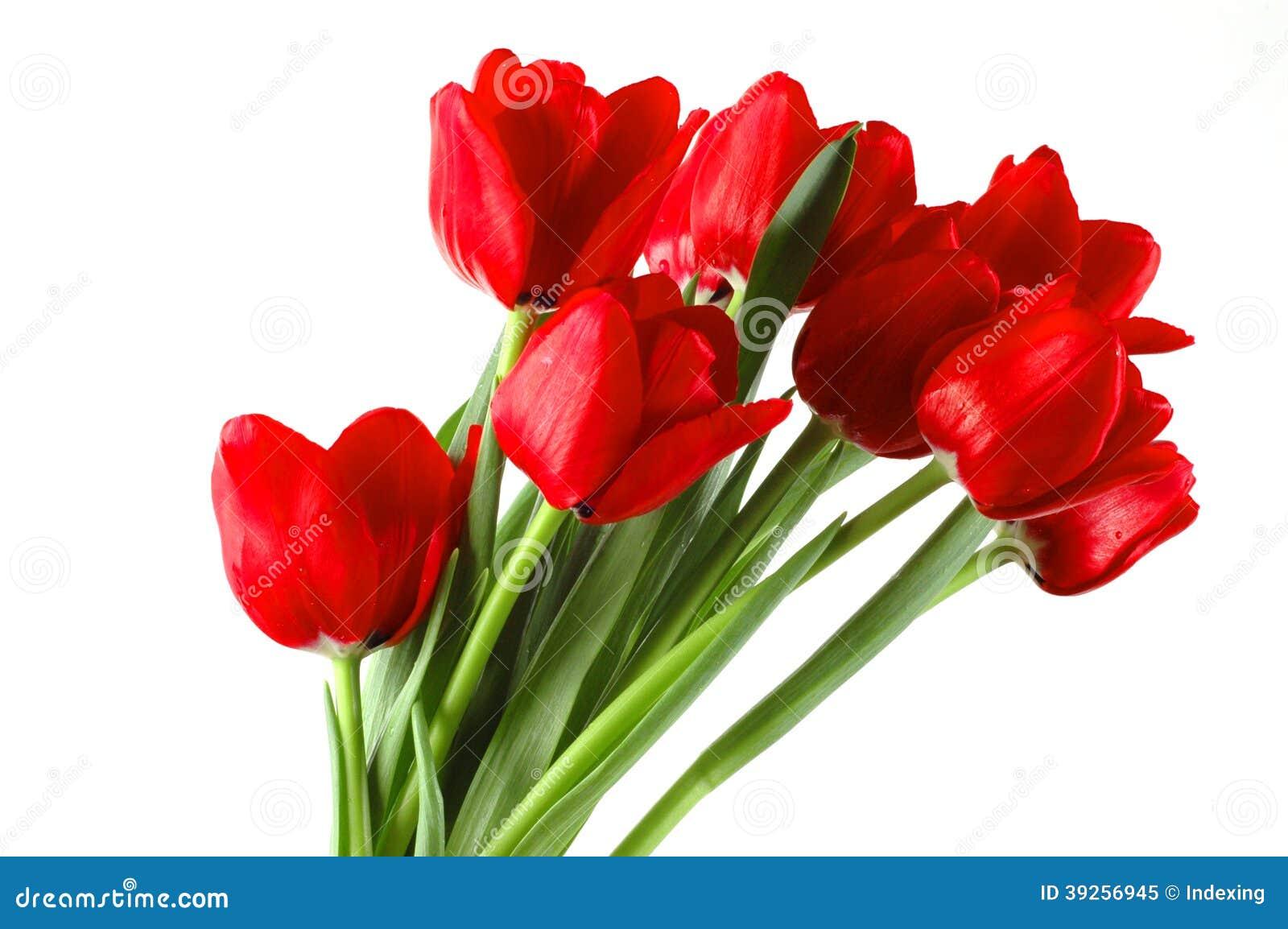 Ramo festivo de tulipanes rojos