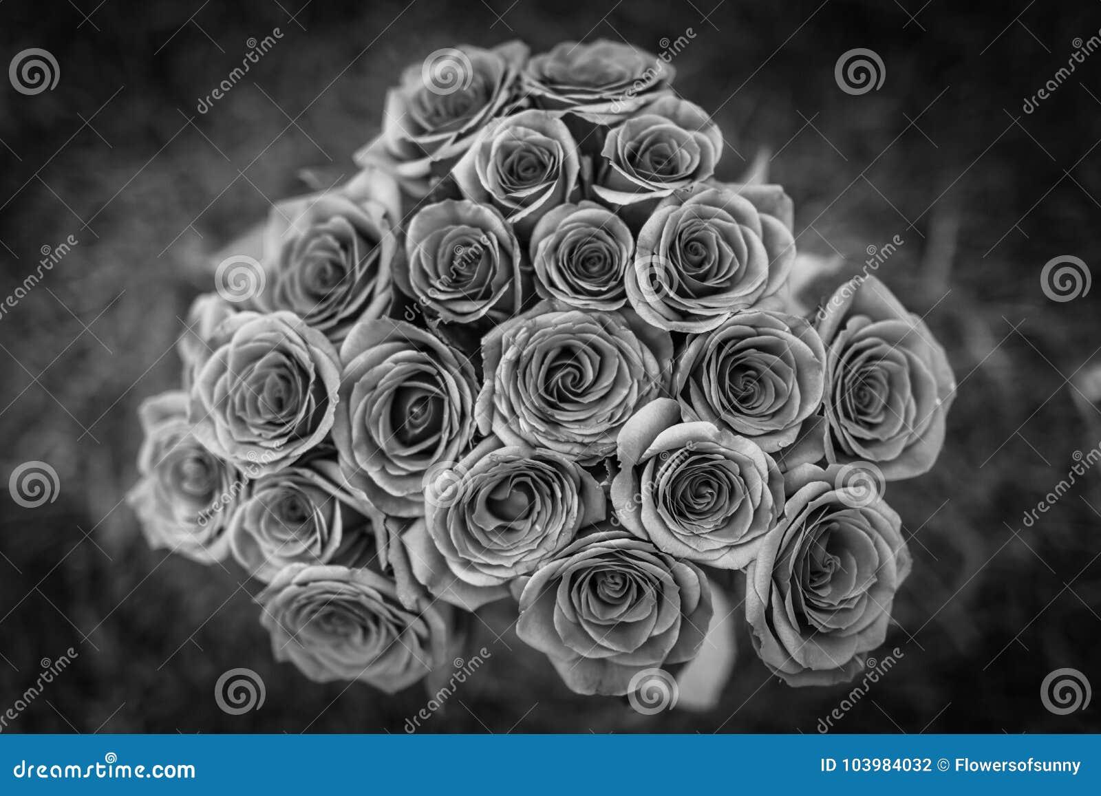 Ramo Hermoso De Las Rosas Rojas En Blanco Y Negro Amor Y Fondo
