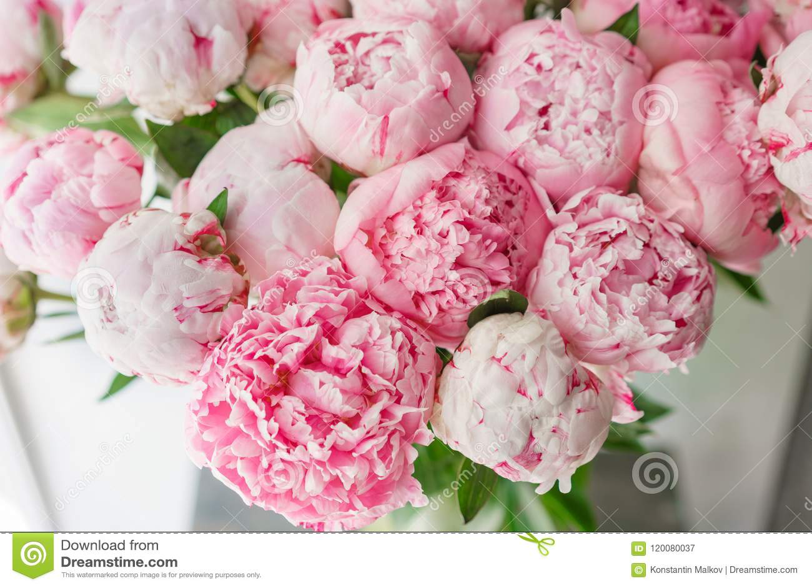 Ramo hermoso de peonías rosadas Composición floral, luz del día wallpaper Flores preciosas en el florero de cristal