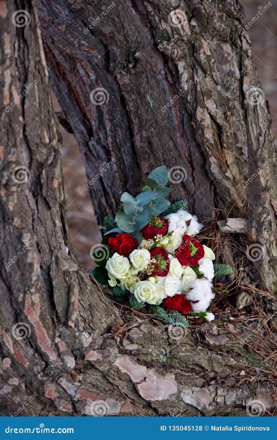Ramo hermoso del invierno de picea, de rosas y de algodón El ramo del ` s de la novia