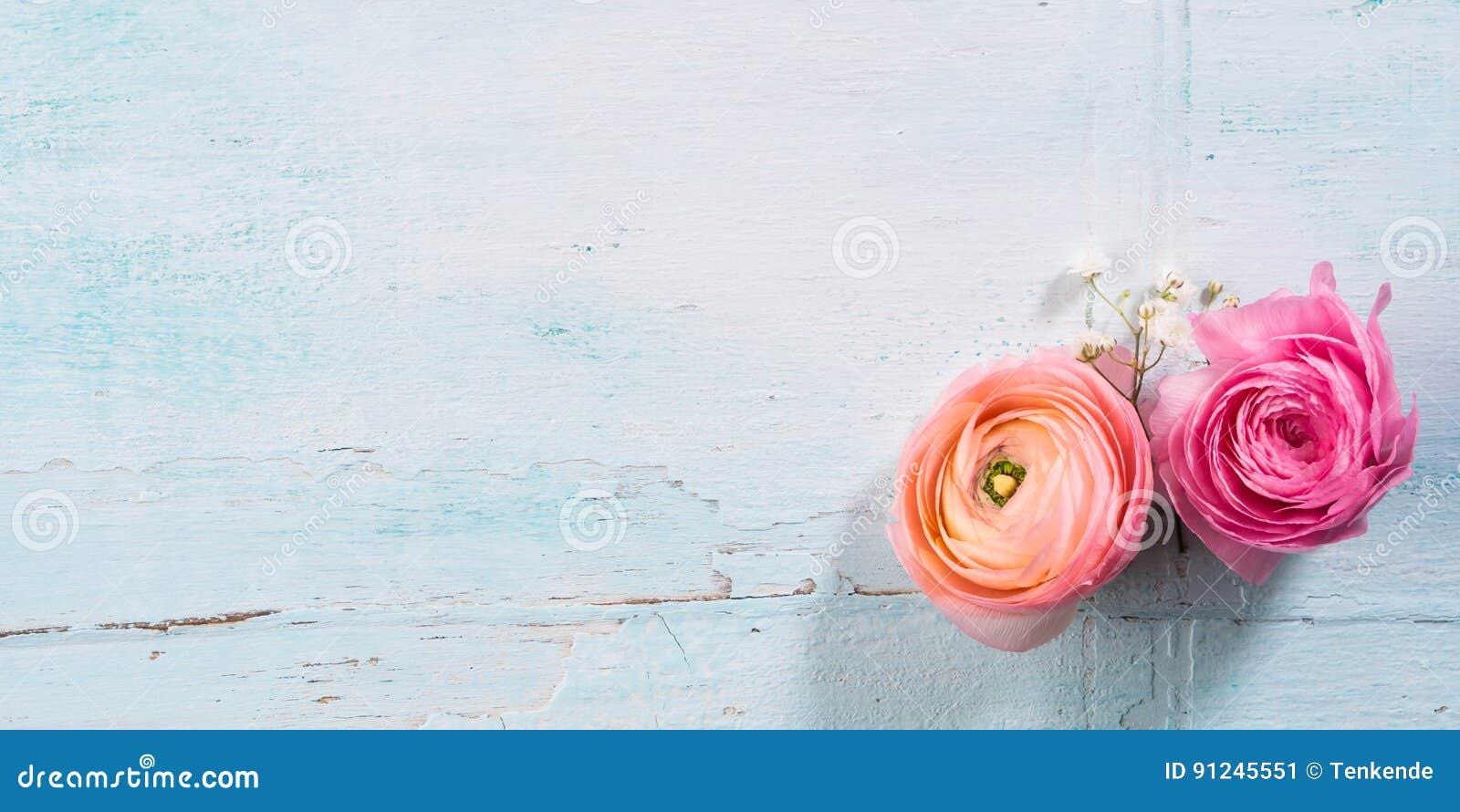 Ramo Hermoso Del Marco De La Flor En La Turquesa Imagen de archivo ...