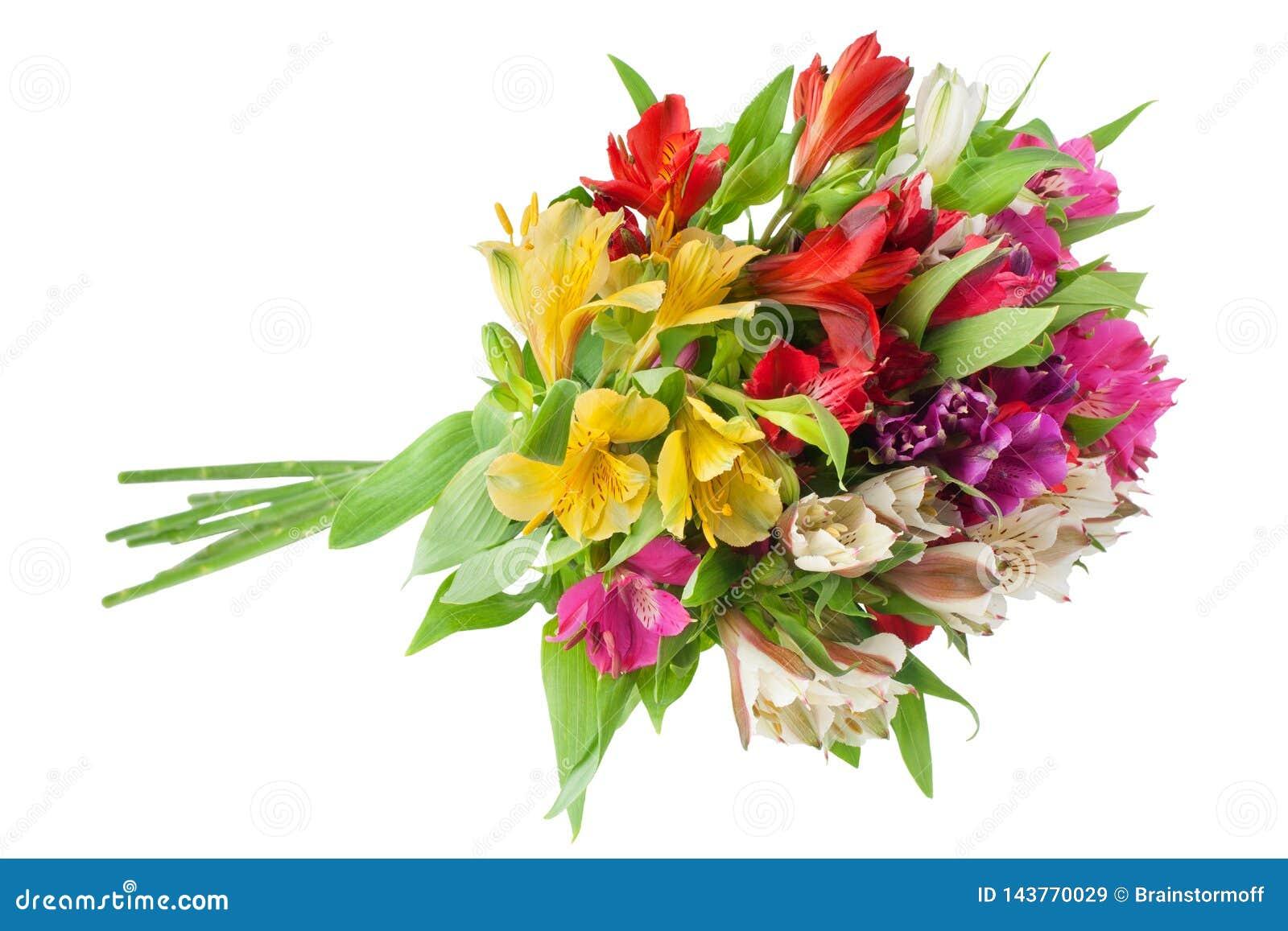 Ramo redondo del alstroemeria de las flores multicoloras de los lirios en el primer aislado fondo blanco