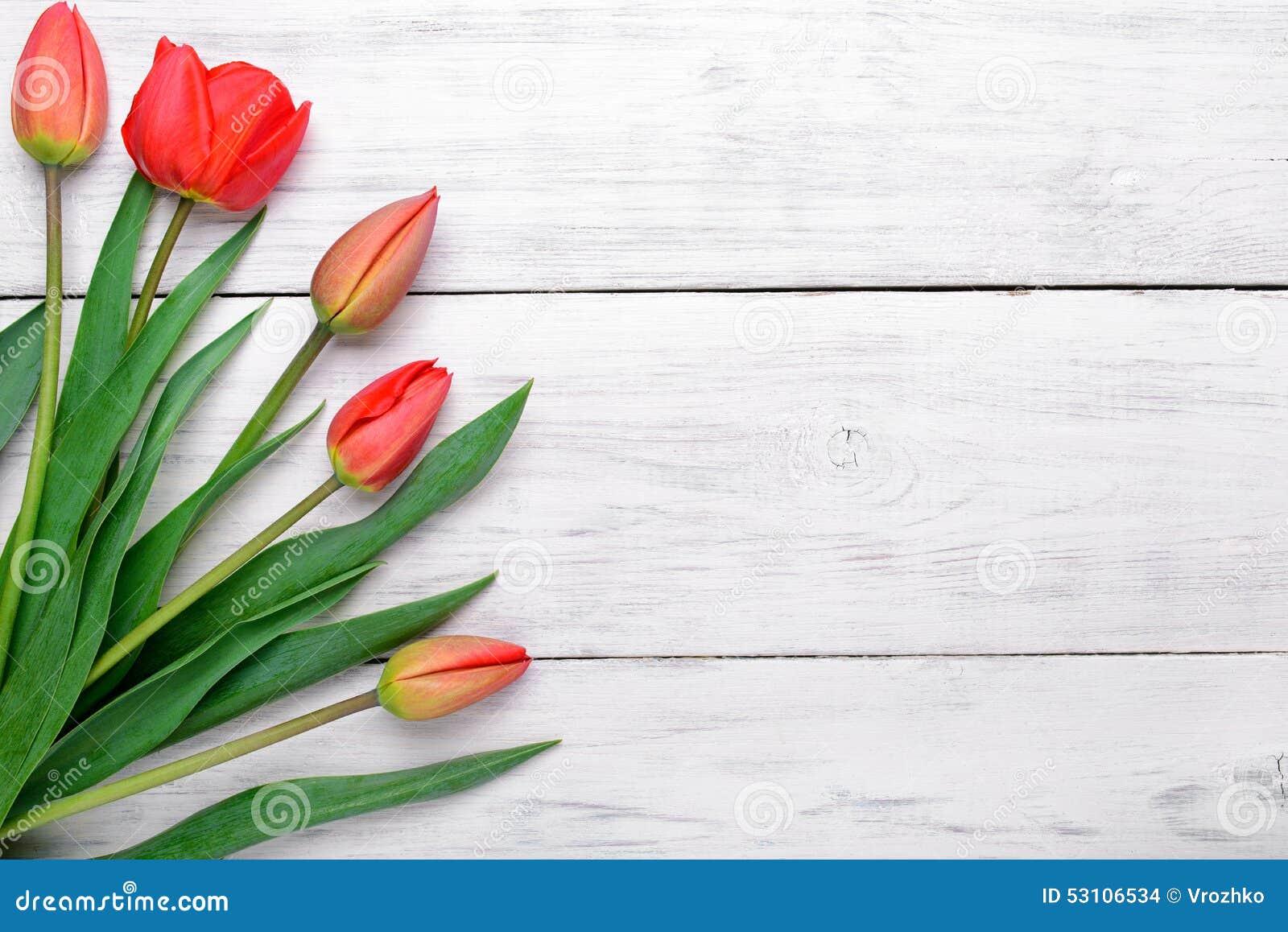 Ramo rojo de los tulipanes en fondo de madera Visión superior, espacio de la copia