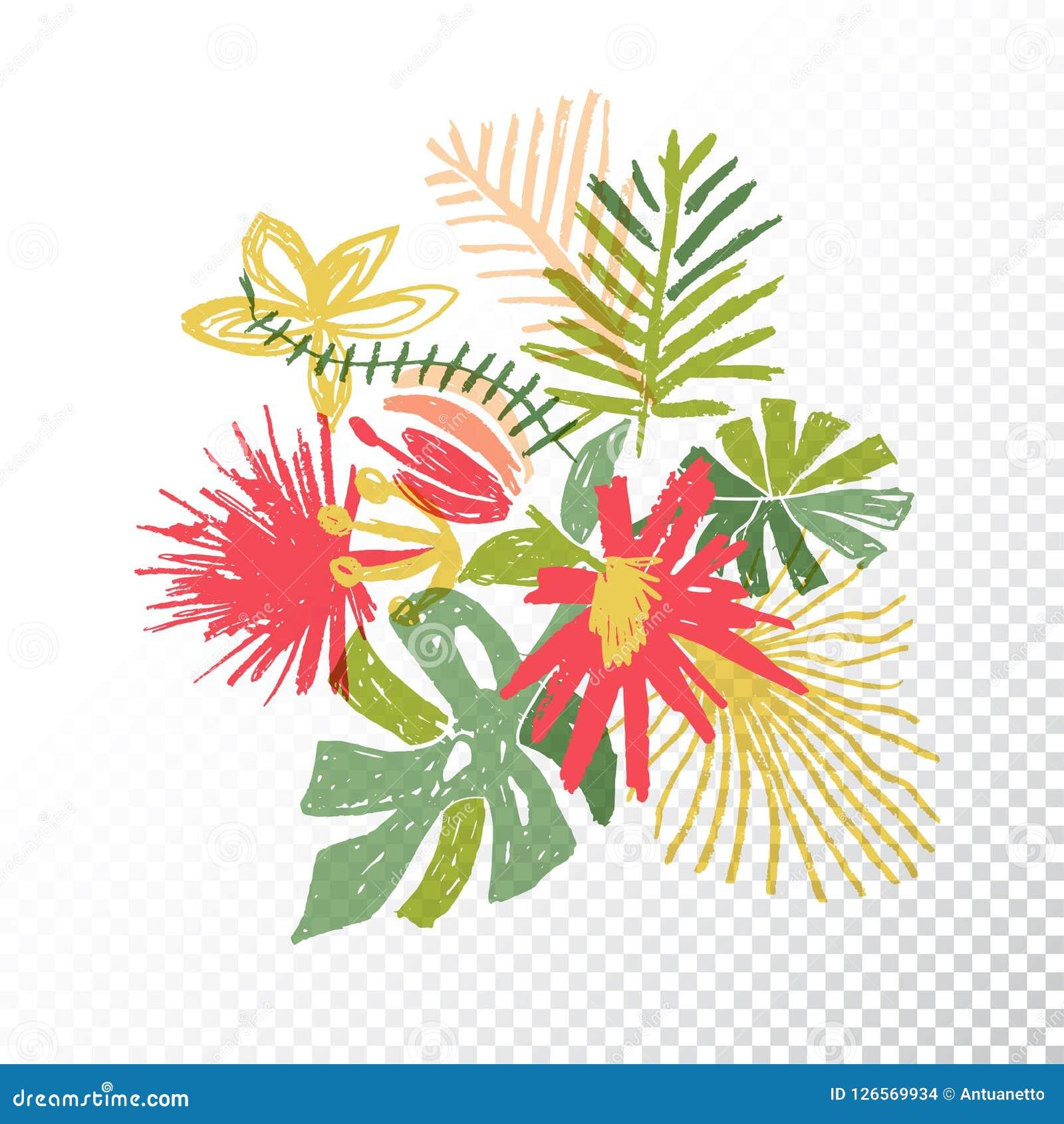 Ramo Tropical De La Flor, Fondo Translúcido Ilustración del Vector ...