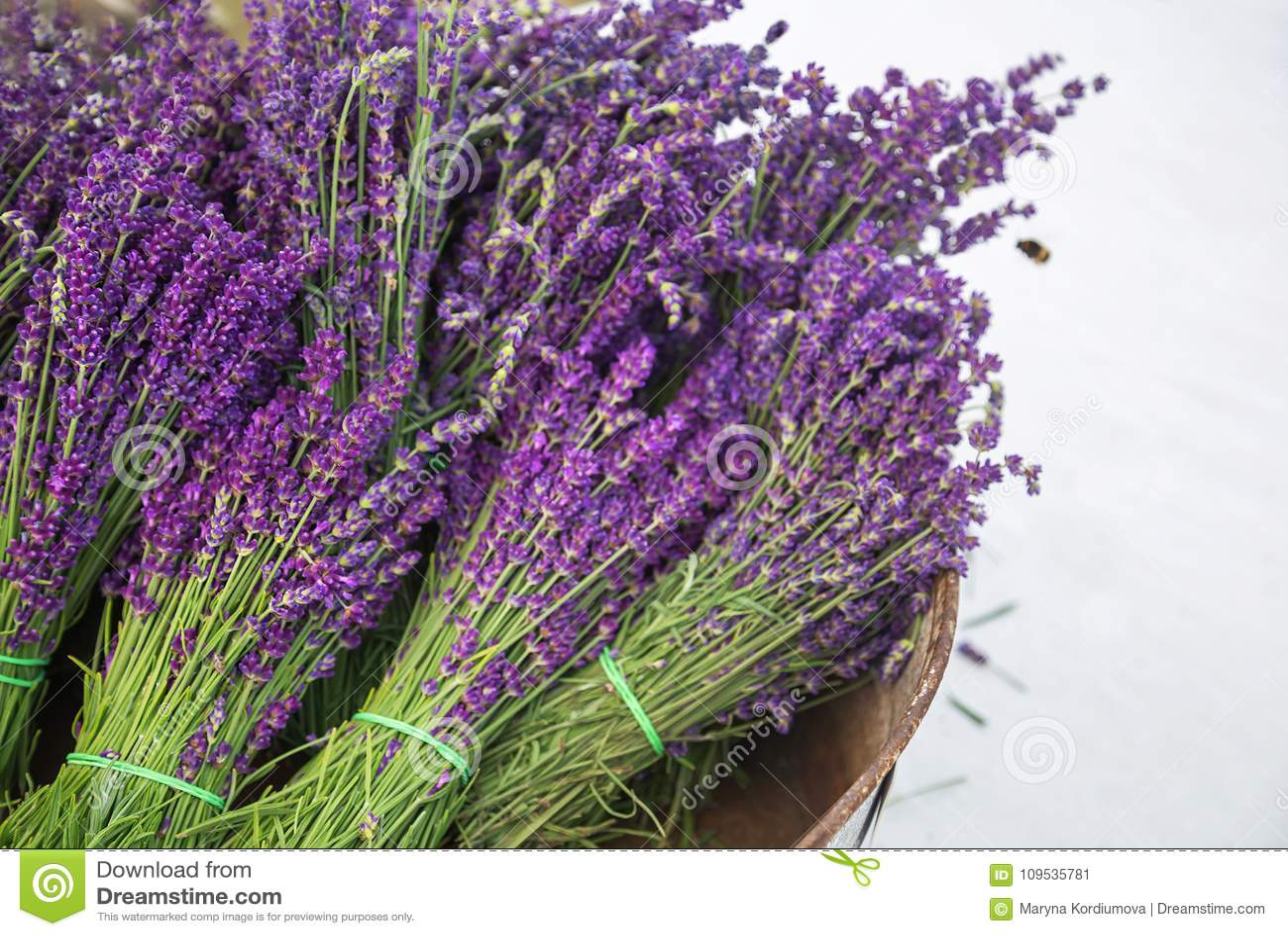 Ramos de la lavanda en cesta y abeja El vintage de la lavanda con lavanda púrpura fresca, hermosa florece los flores