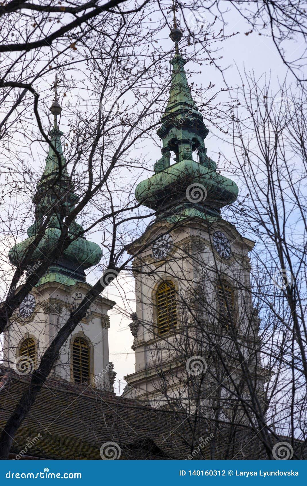 Ramos pretos das árvores no fundo das duas abóbadas da igreja Católica de St Anne em Budapest, na margem direita do th