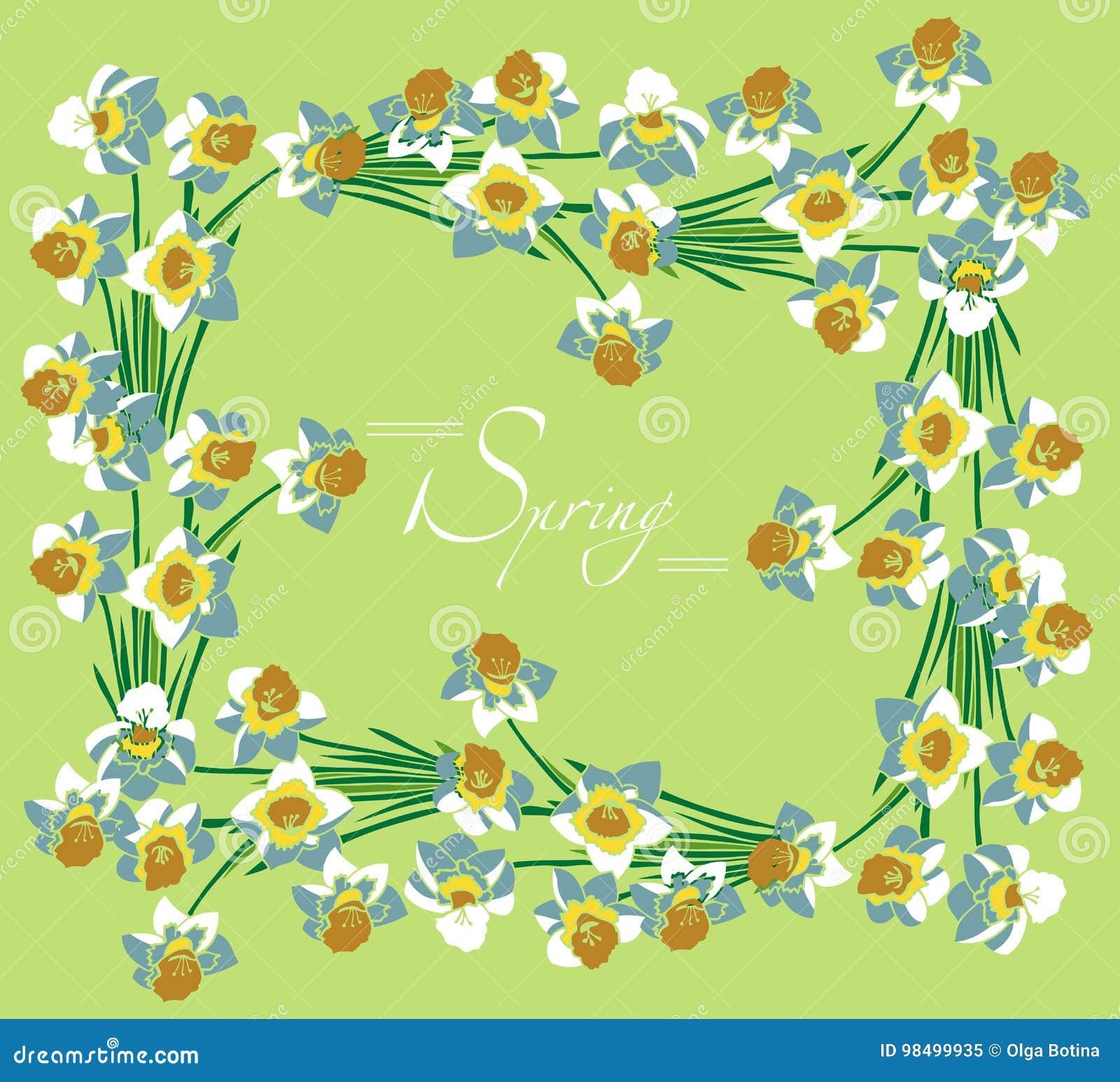 Ramowa biała daffodils wiosna