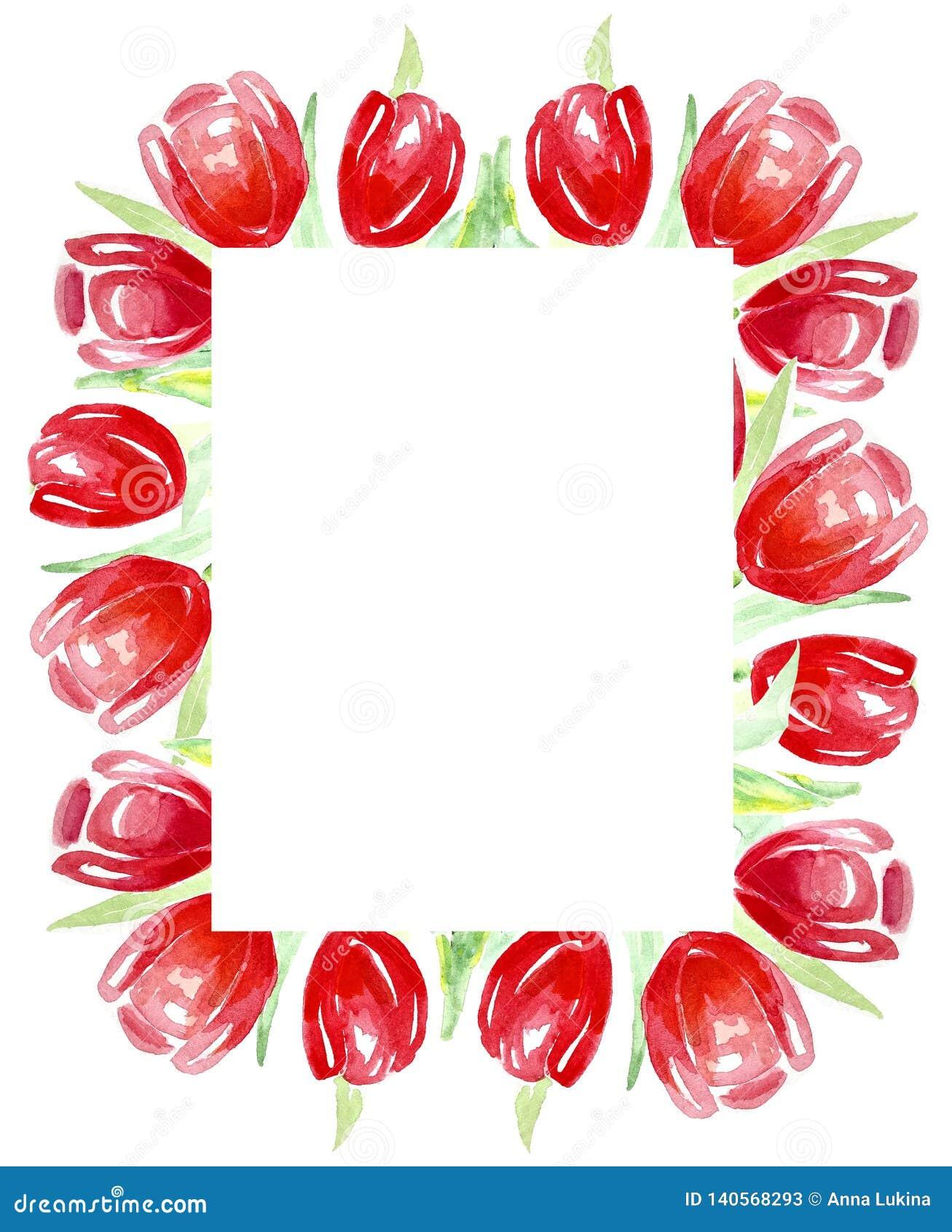 Ramowi czerwoni tulipany dla zaproszeń, etykietki, karty akwarela