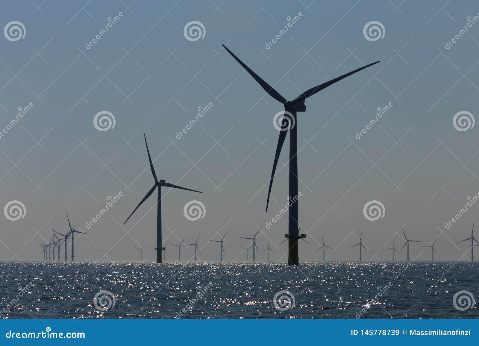 Rampion windfarm近海平台风车在离布赖顿的附近,苏克塞斯,英国海岸