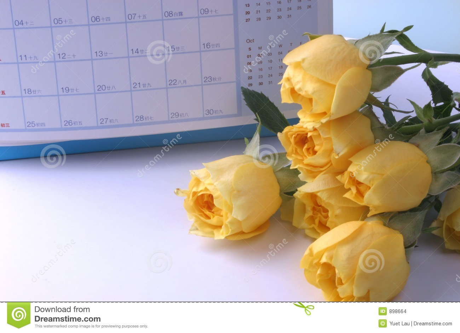 Ramy kalendarzowej rose żółty