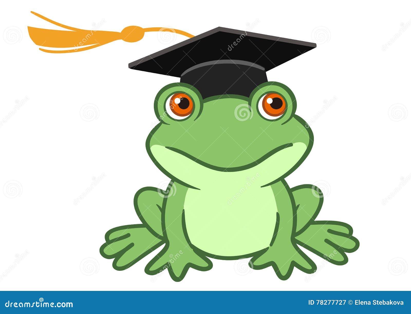 Rana in cappuccio di graduazione illustrazione vettoriale