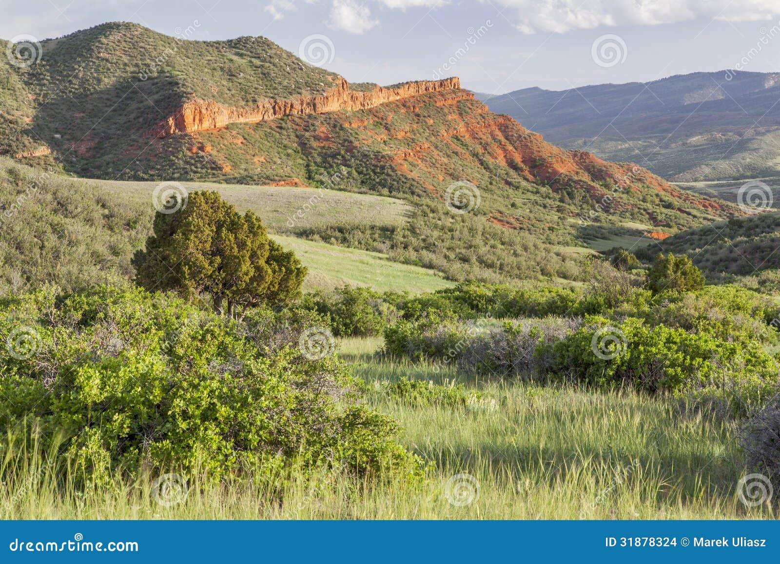 Ranch della montagna di Colorado