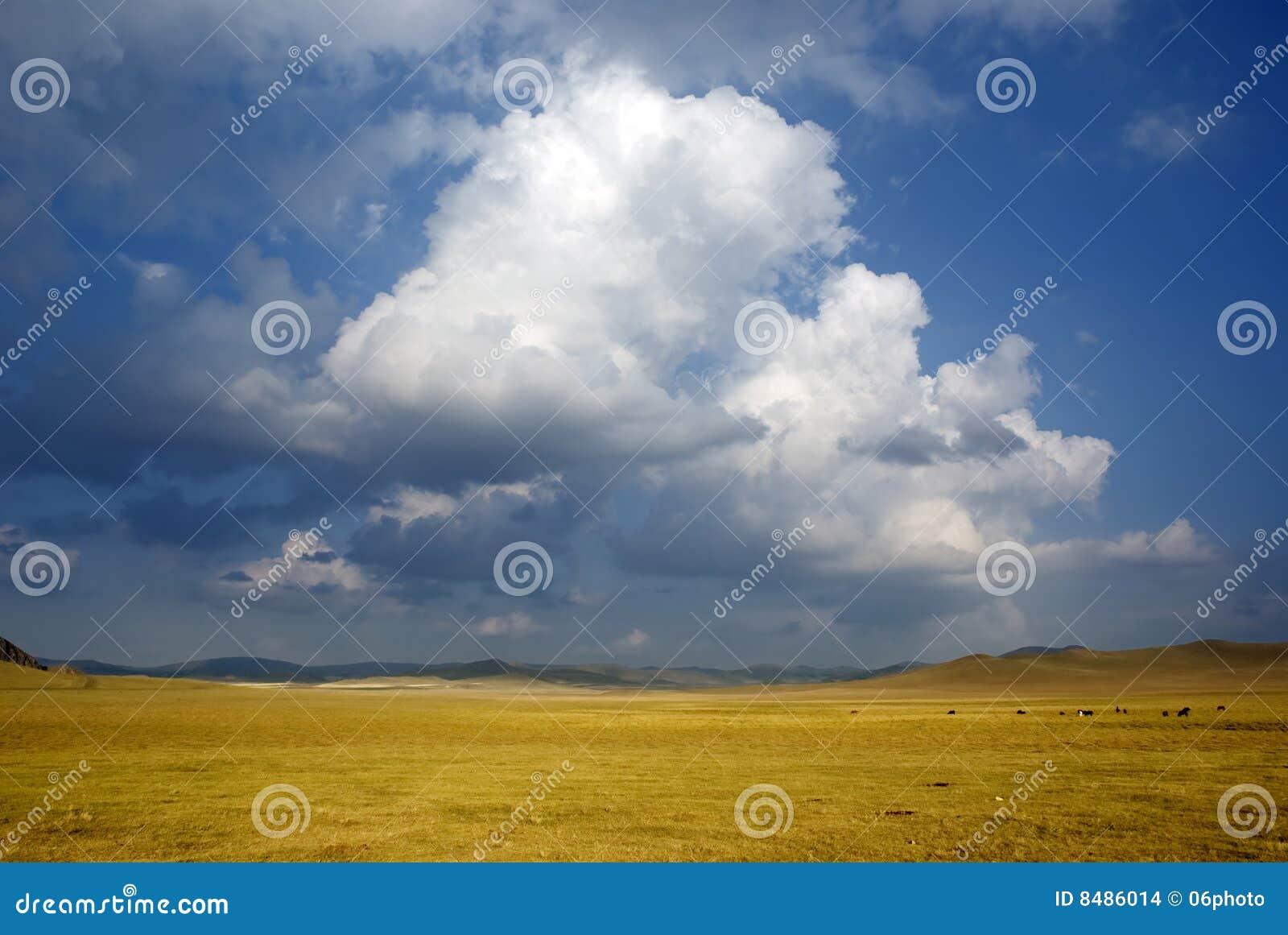 Ranch und Wolke