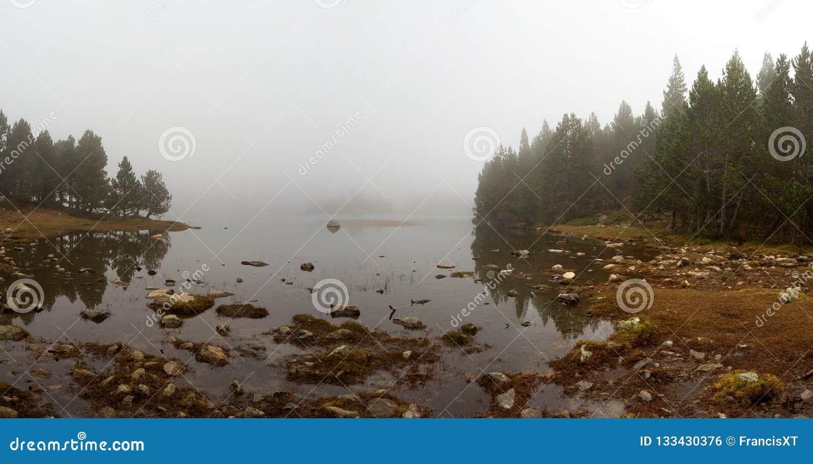 Rand von einem See umgeben durch einen Kiefernwald an einem nebeligen Tag, Font Romeu