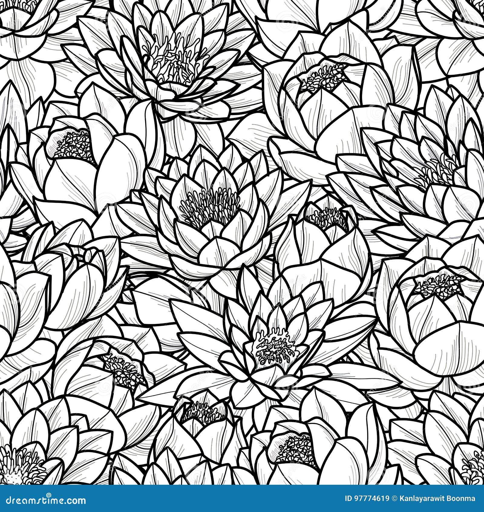 Random lotus flower in black outline on white background seamless download random lotus flower in black outline on white background seamless pattern vector illustration izmirmasajfo