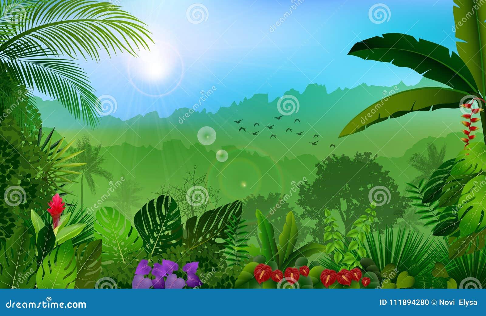 Ranek w dżungla lasu tropikalnego tle