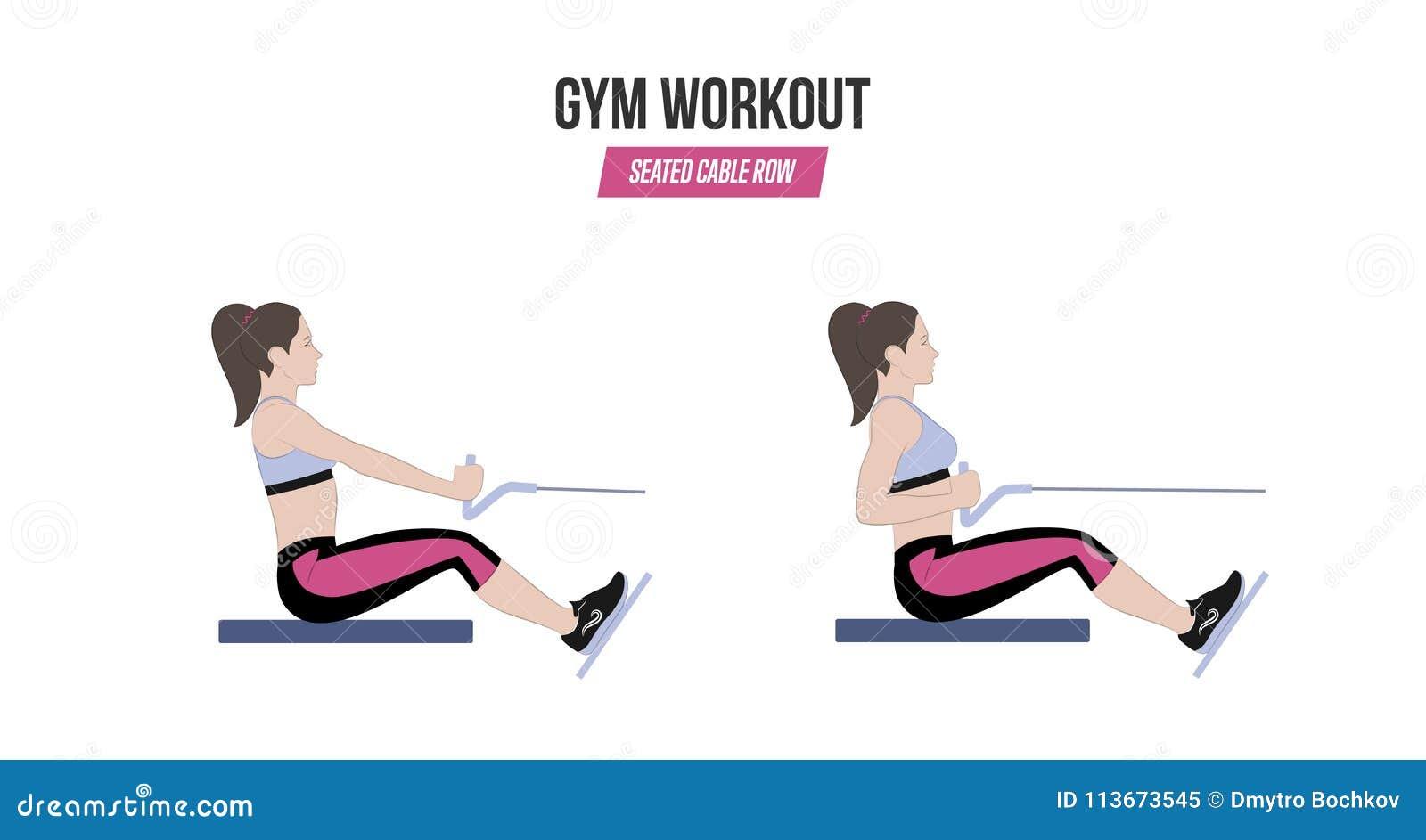 Rangée posée de câble Exercices sportifs Exercices dans un gymnase workout Illustration d un vecteur actif de mode de vie