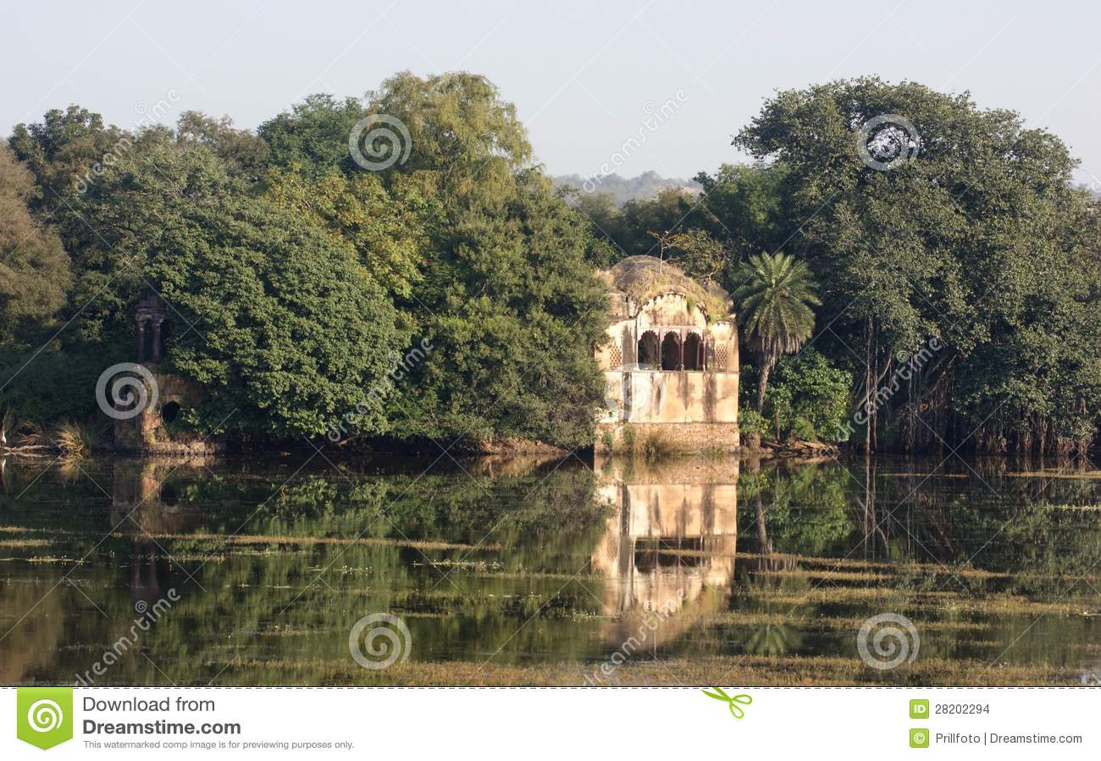 Download Ranthambore National Park stock photo. Image of lake - 28202294