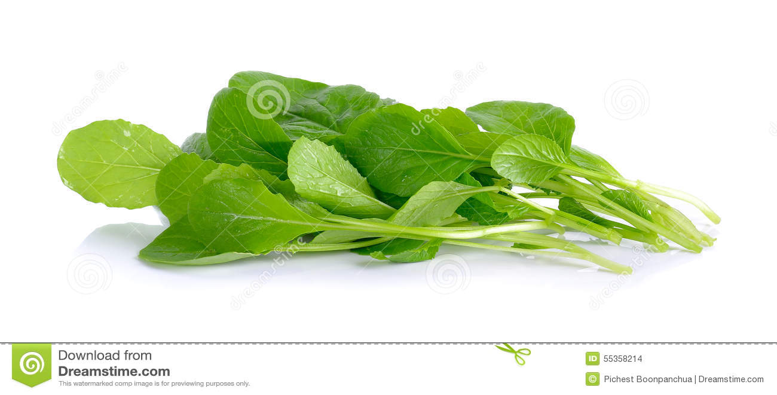 Rapa verde fresca sui precedenti bianchi
