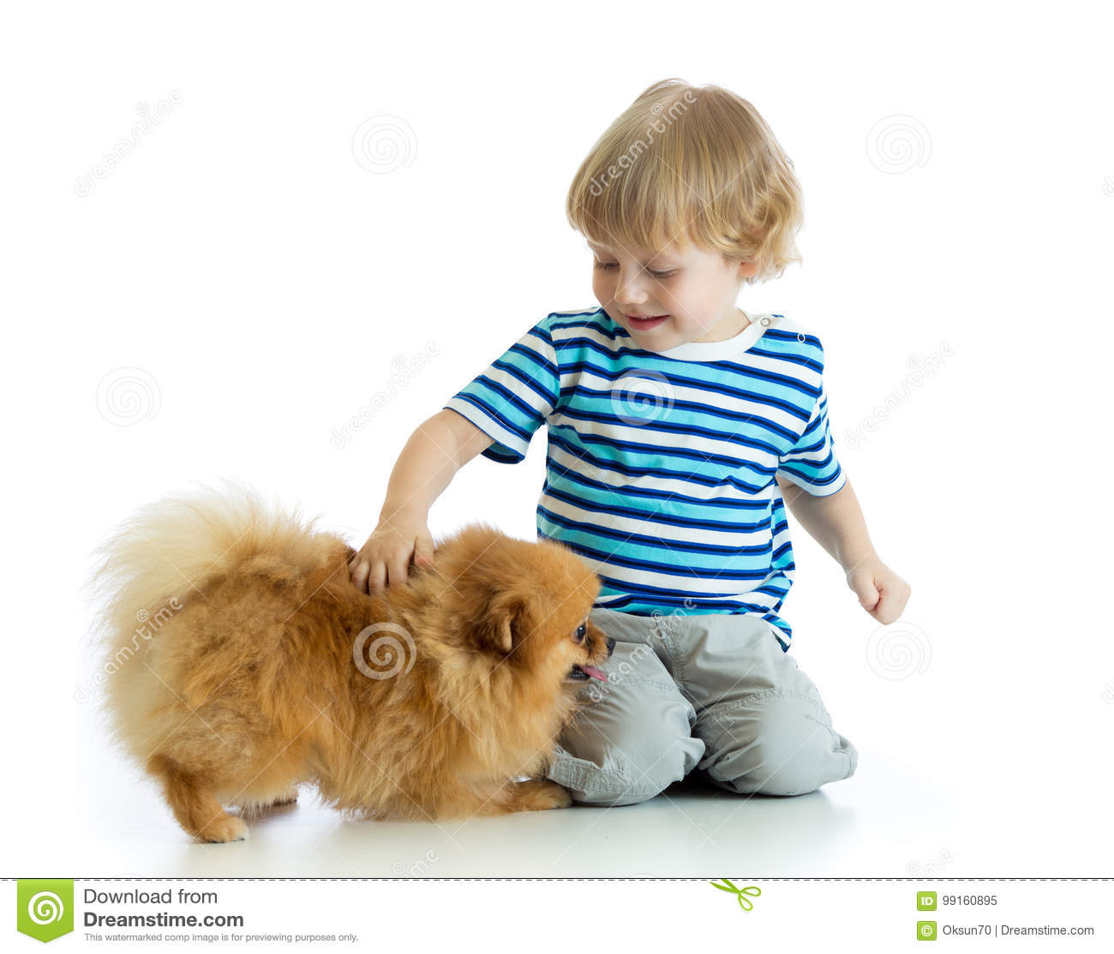 Rapaz pequeno com o spitz do cão, isolado no fundo branco