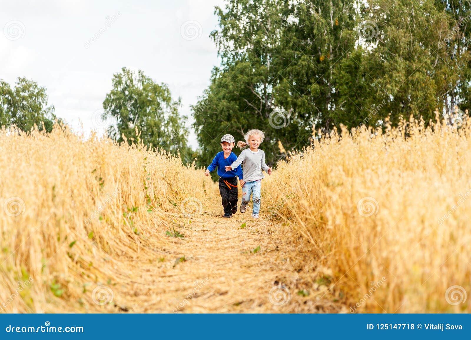Rapaz pequeno e menina em um campo de trigo