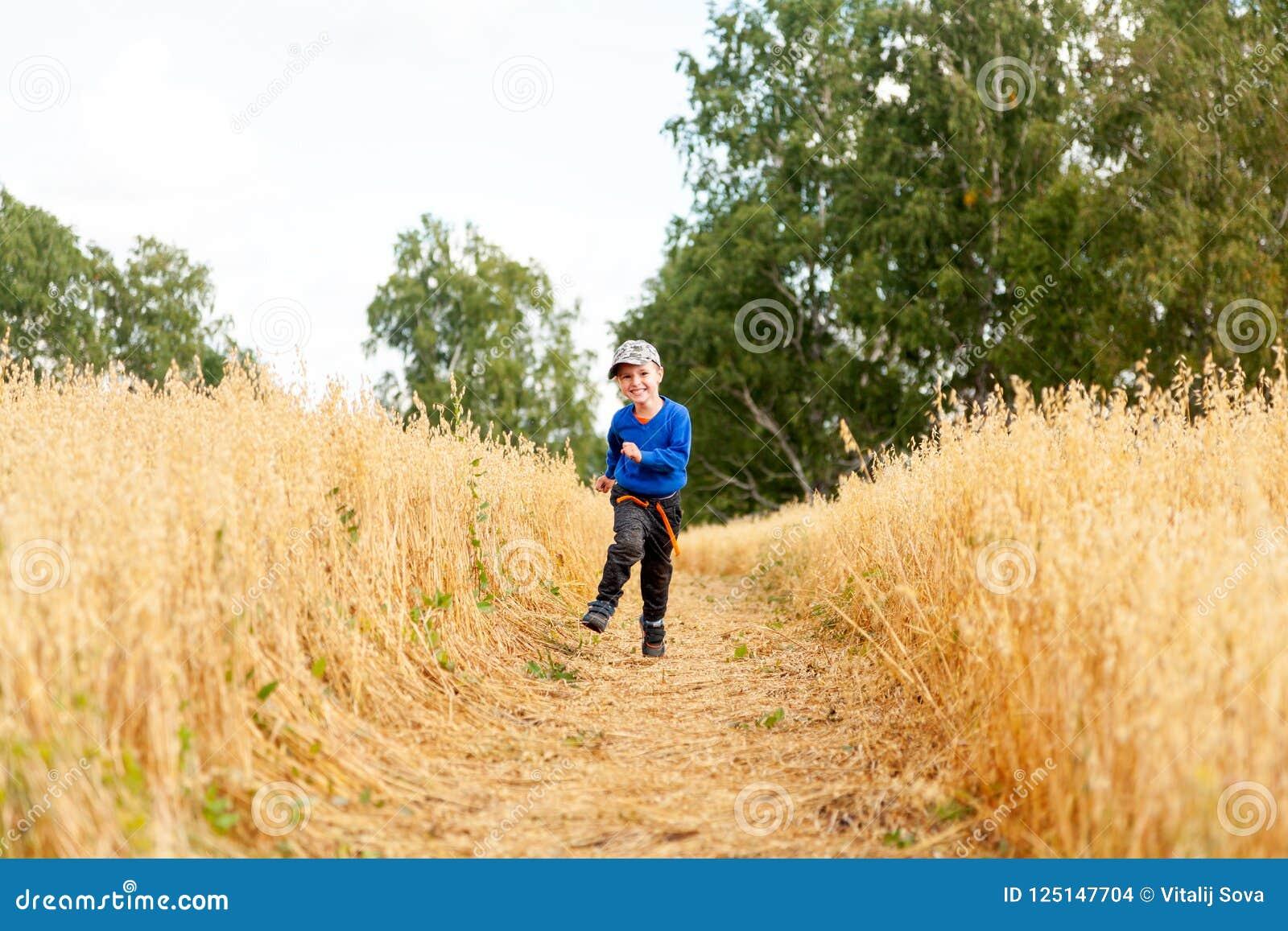 Rapaz pequeno em um campo de trigo