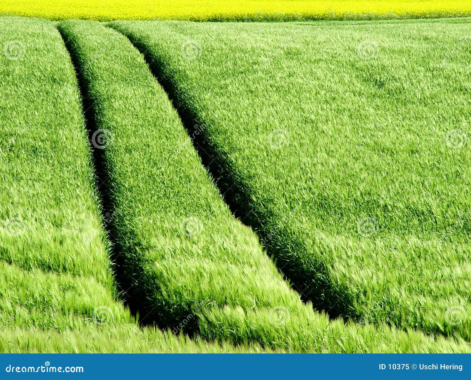 Crop Tracks
