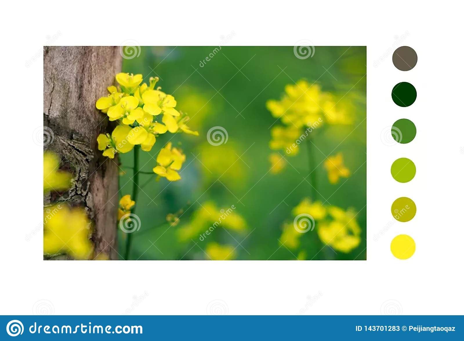 Yellow consisted with tree