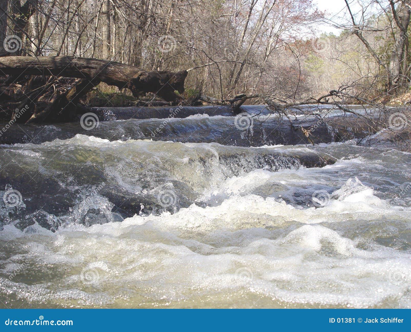 Rapids de fleuve