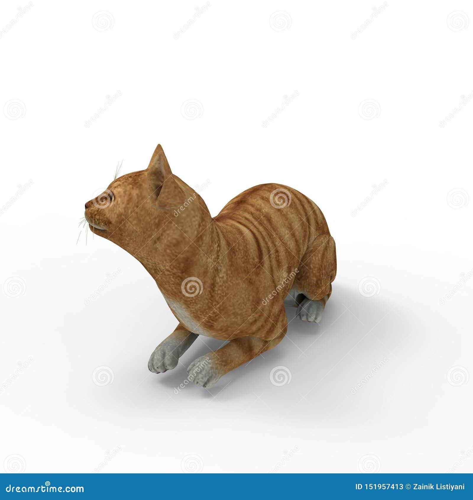 Rappresentazione 3d del gatto creata usando uno strumento del miscelatore